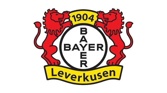 官方:勒沃库森因球迷不当行为遭3.3万欧罚款
