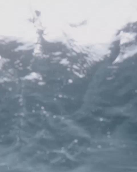 """""""梅西""""2019月6月10日视频"""